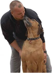 Chris Loverseed – Head Dog Trainer